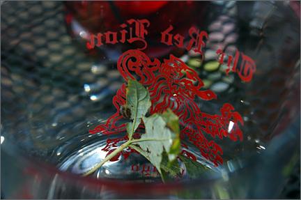 leafinglass.jpg