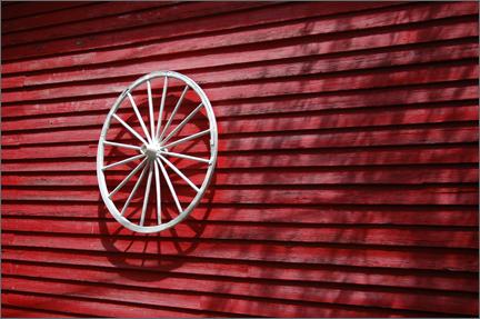 whitewheel.jpg